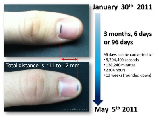 Fingernail Growth Rate