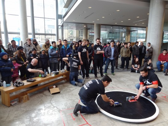 3kg sumo competition